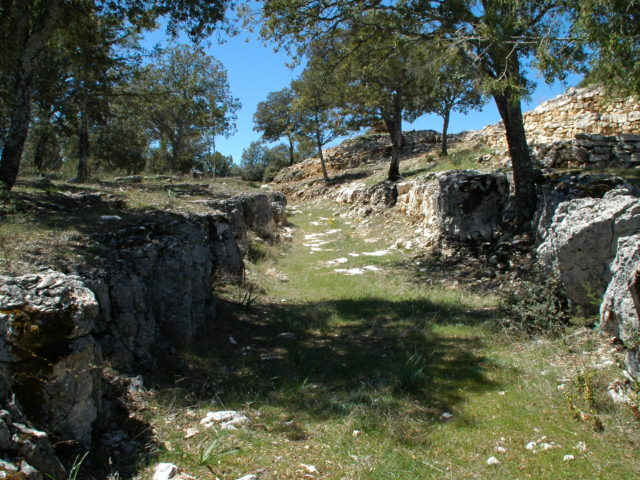 Ruta de Olmeda de Cobeta al castro de Peña Moñuz