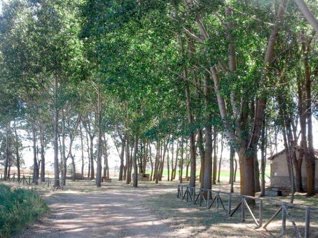 Área Recreativa La Laguna (Tordesilos)