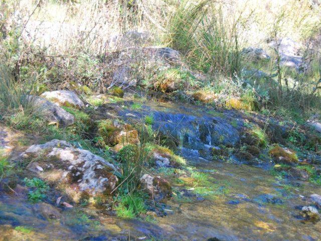 Nacimiento del Río Guadiela