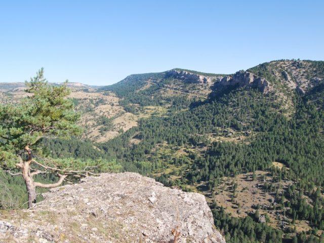 Mirador El Rason (Peralejos)