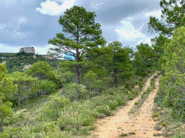 SL PNAT 3 Senda del Castillo (Valtablado del Río)