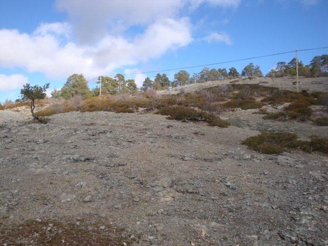 Antiguo Volcan de Orea